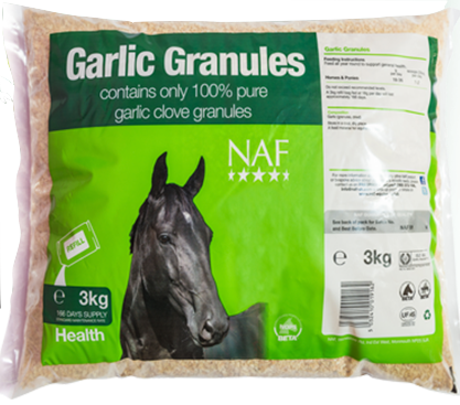 Garlic for horses